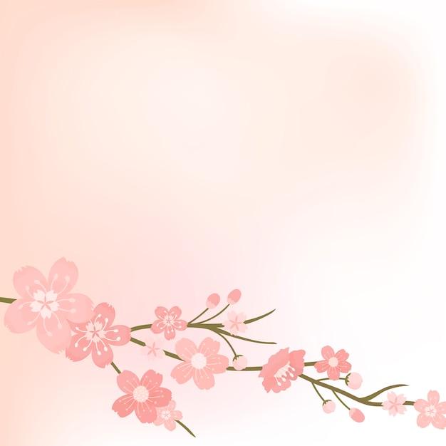 Vecteur de fond blanc fleur de cerisier rose Vecteur gratuit