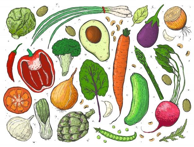 Vecteur grand ensemble de légumes dans un croquis. Vecteur Premium