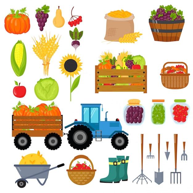Vecteur isolé de symboles de récolte. Vecteur Premium