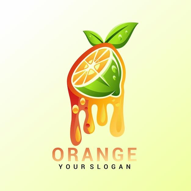 Vecteur de logo orange, modèle, illustration Vecteur Premium