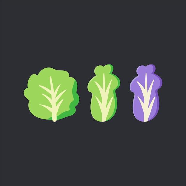 Vecteur de nourriture de laitue biologique fraîche Vecteur gratuit