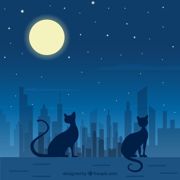 Vecteur nuit chat art t l charger des vecteurs gratuitement - Telecharger image de chat gratuit ...