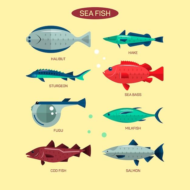 Vecteur de poisson dans la conception de style plat. collecte de poissons de mer, de mer et de rivière. saumon, fugu, bar, esturgeon. Vecteur Premium