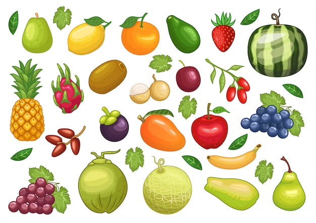 Vecteur stock ensemble d'illustration d'objet graphique fruits Vecteur Premium