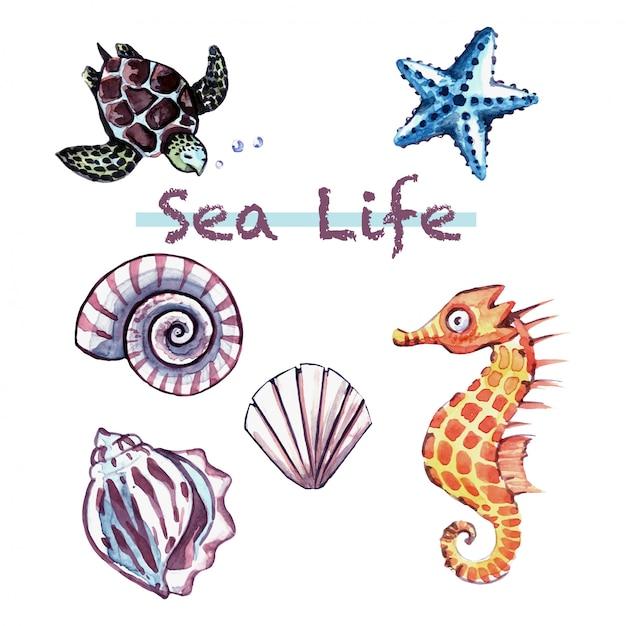 Vie marine / vie sous-marine / animaux marins mignons Vecteur Premium