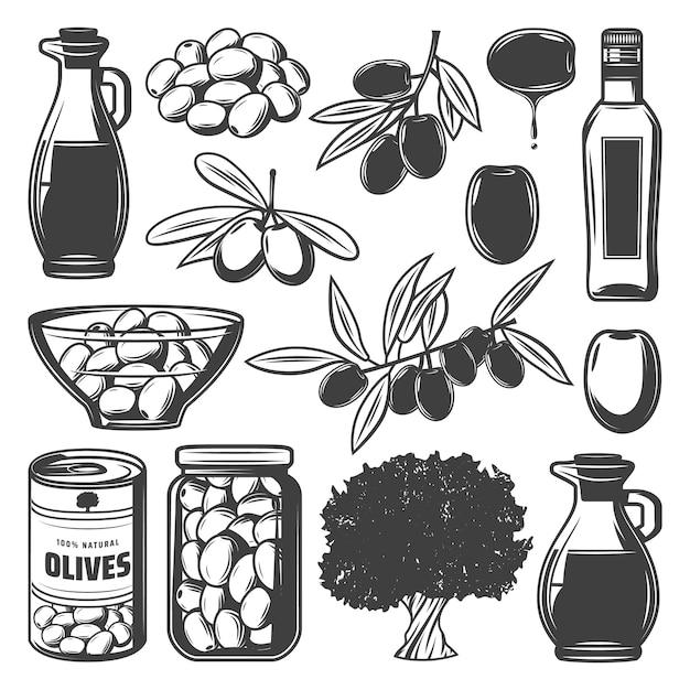 Vintage Collection D'olives Naturelles Avec Des Branches D'arbres Peut Bouteille De Récipient En Verre Et Pichet Isolé Vecteur gratuit