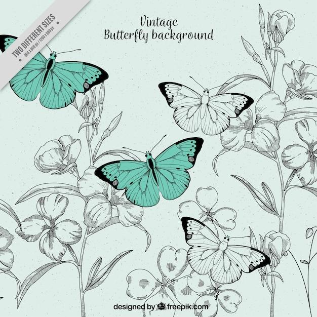 Vintage illustration de fond des papillons et des fleurs Vecteur gratuit