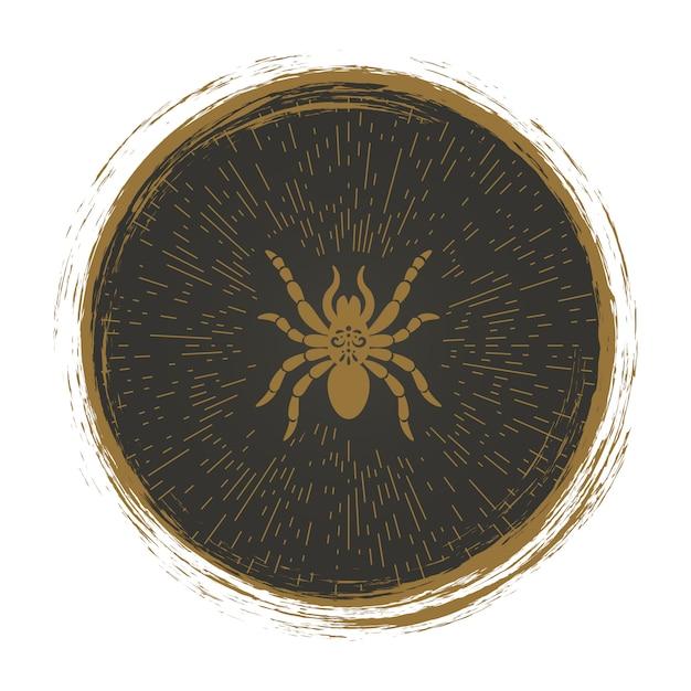 Vintage logo araignée Vecteur Premium