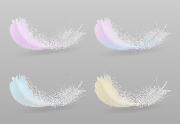 Voler ou tomber d'oiseaux exotiques plumes colorées et moelleuses Vecteur gratuit