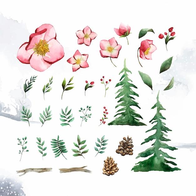 Acuarela conjunto de vector de flores y hojas de invierno vector gratuito