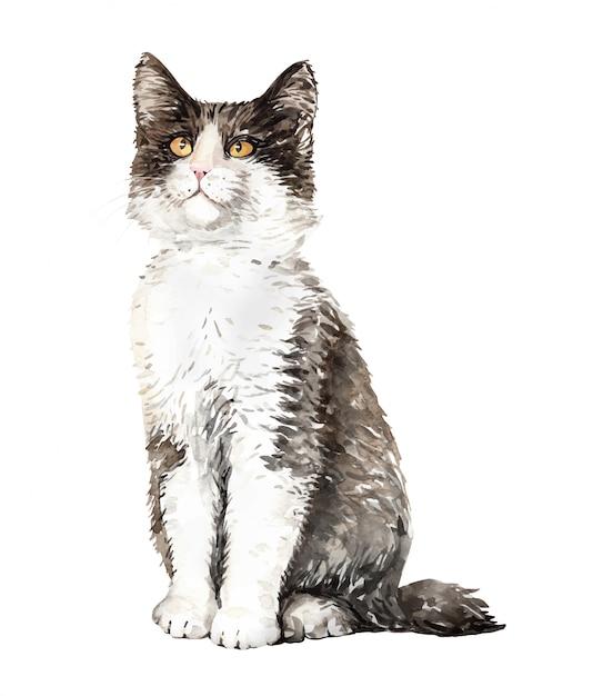 Acuarela gato bosque noruego sentado. Vector Premium