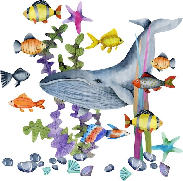Acuarela ilustración de ballena y peces Vector Premium