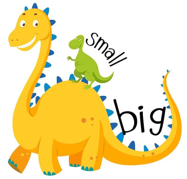 Adjetivo opuesto grande y pequeño vector gratuito