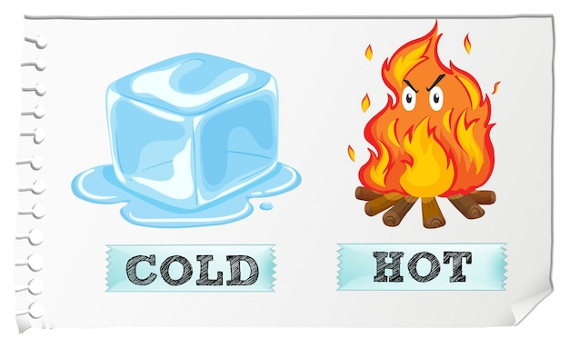 Cold Showers vs. Hot Showers: Which One Is Better?
