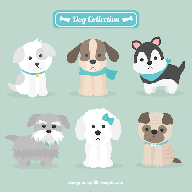 Adorables perritos  Vector Gratis