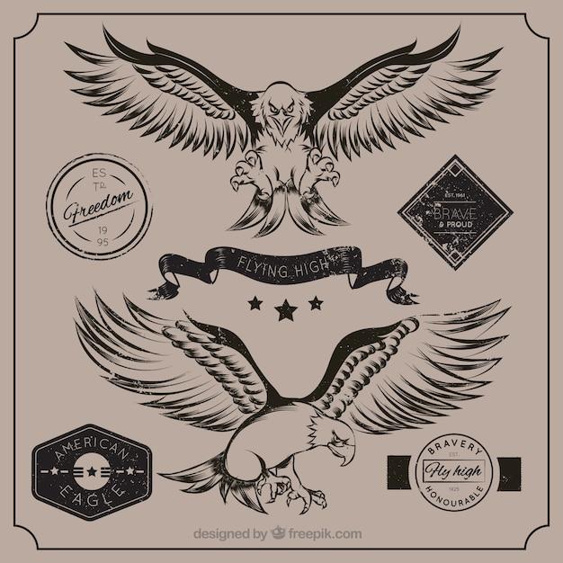 Águila americana vector gratuito