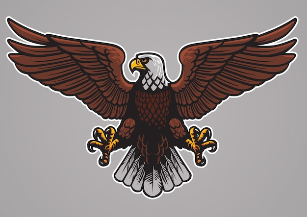 Águila calva extendió las alas. Vector Premium