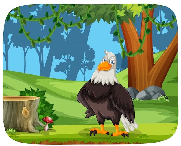 Un águila en el fondo de la naturaleza vector gratuito