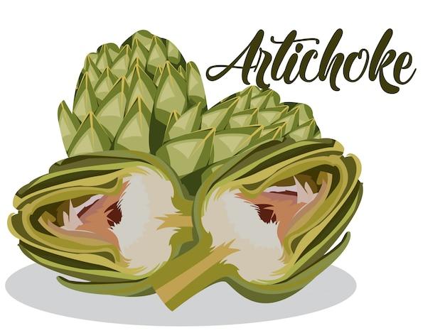 Alcachofa en fondo blanco Vector Premium