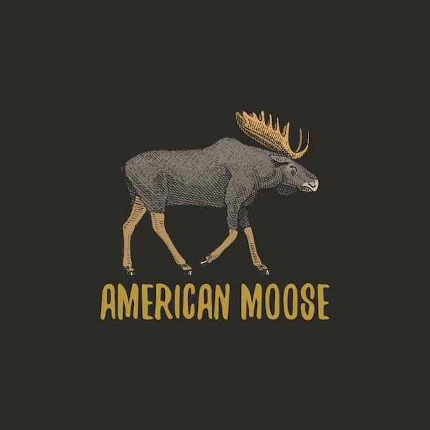 Alce americano o alce eurasiático grabado dibujado a mano en estilo antiguo boceto, animales antiguos. logo Vector Premium