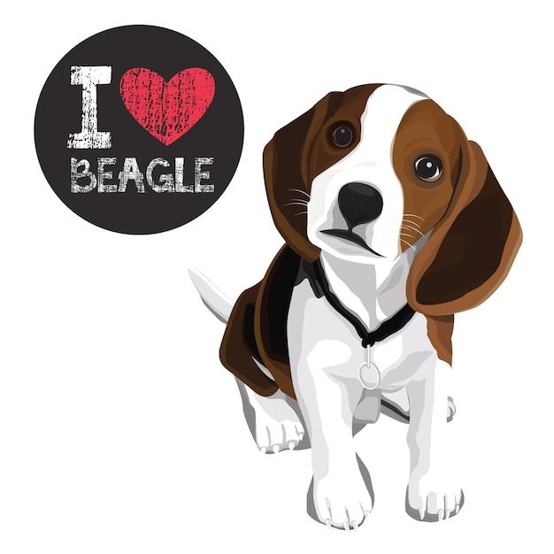 Amo el beagle Vector Premium