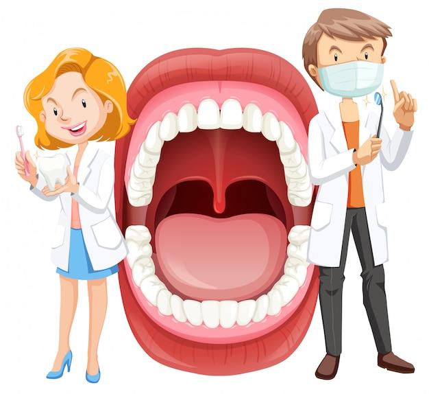 Anatomía de la boca humana con dentista | Descargar Vectores Premium