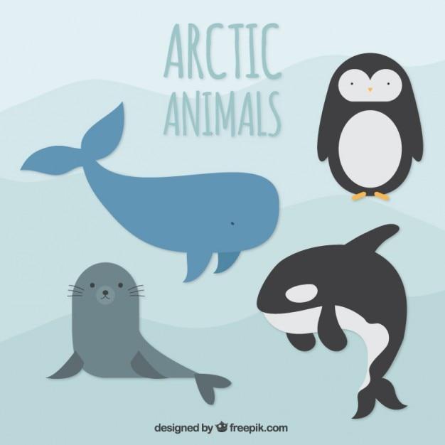 Animales árticos vector gratuito