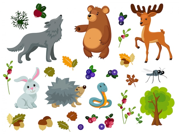 Animales del bosque. Vector Premium