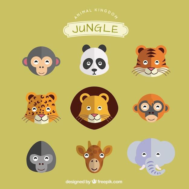 Animales de la selva | Descargar Vectores gratis