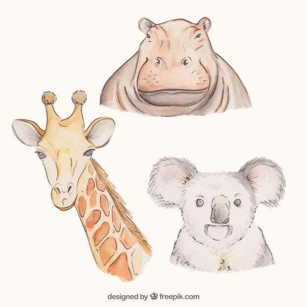 Animales impresionantes dibujados a mano Vector Premium