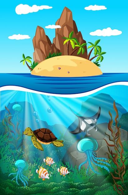 Animales marinos nadando bajo el agua Vector Premium
