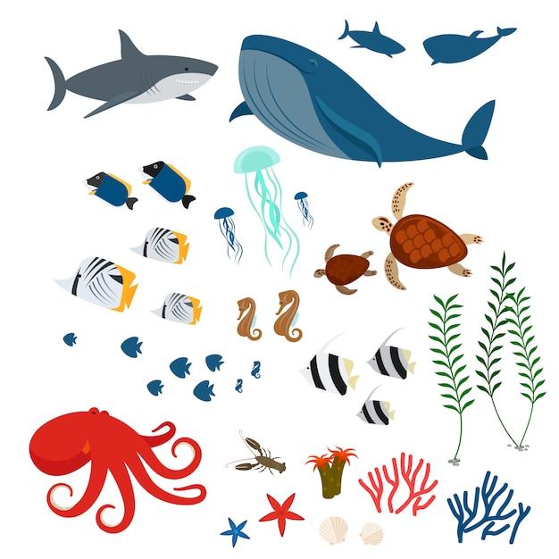 Animales y peces del océano. Vector Premium