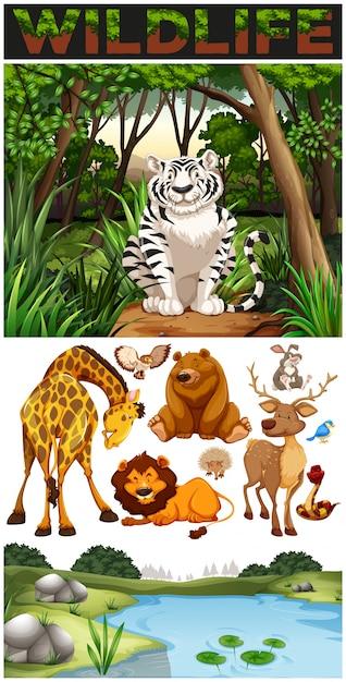 Animales salvajes en la selva Vector Gratis
