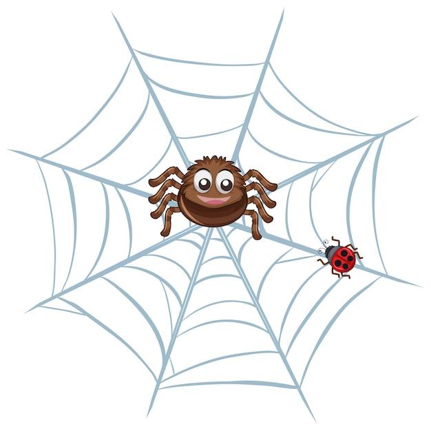 Araña en la red Vector Premium