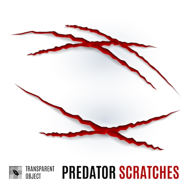 Arañazos de depredador Vector Premium
