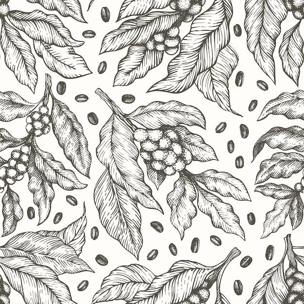 Árbol de café rama de patrones sin fisuras. estilo vintage de café grabado. Vector Premium