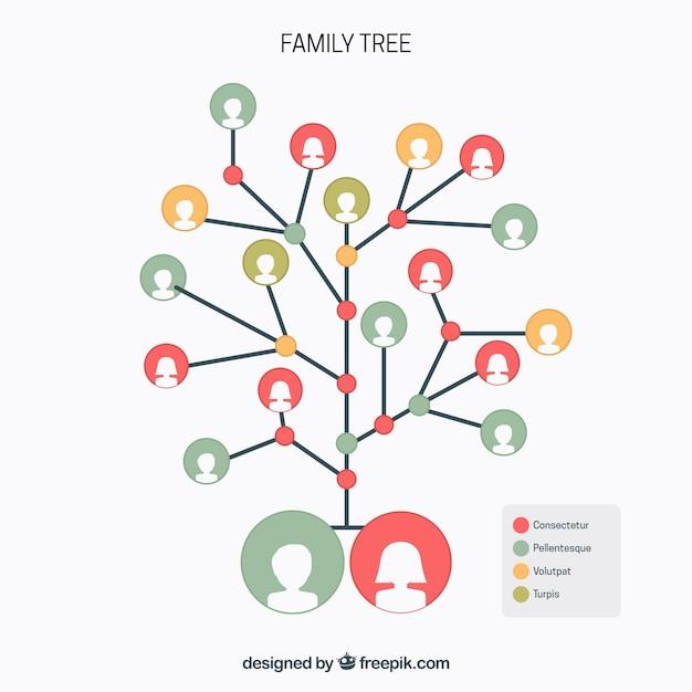 Árbol genealógico con círculos en diferentes colores vector gratuito