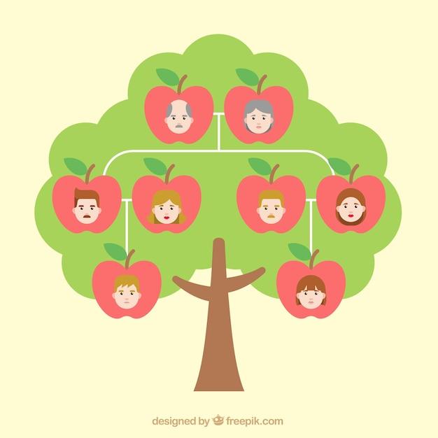 Rbol geneal gico con manzanas descargar vectores gratis - Diseno arbol genealogico ...