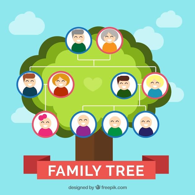 Rbol geneal gico en dise o plano descargar vectores gratis - Diseno arbol genealogico ...