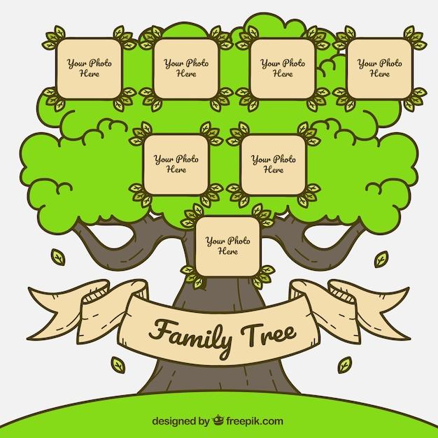 Árbol genealógico en estilo vintage | Descargar Vectores gratis