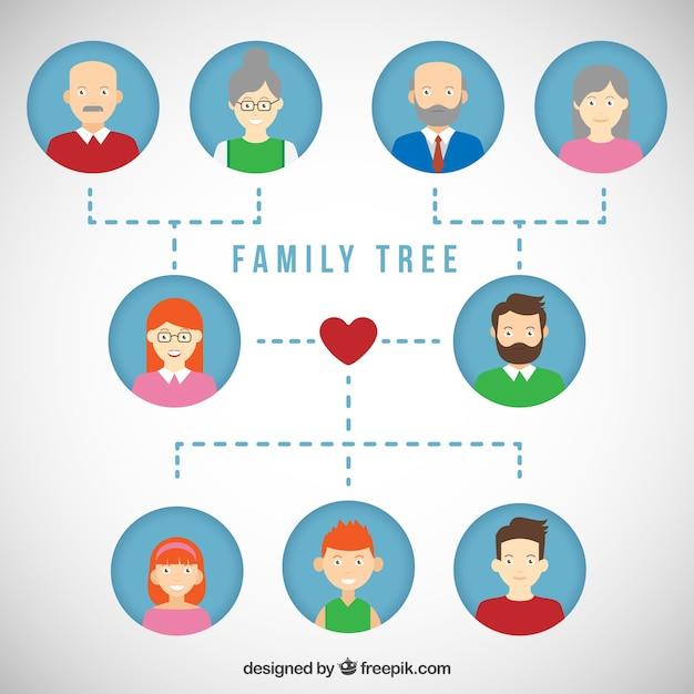 árbol Genealógico Plano Descargar Vectores Gratis