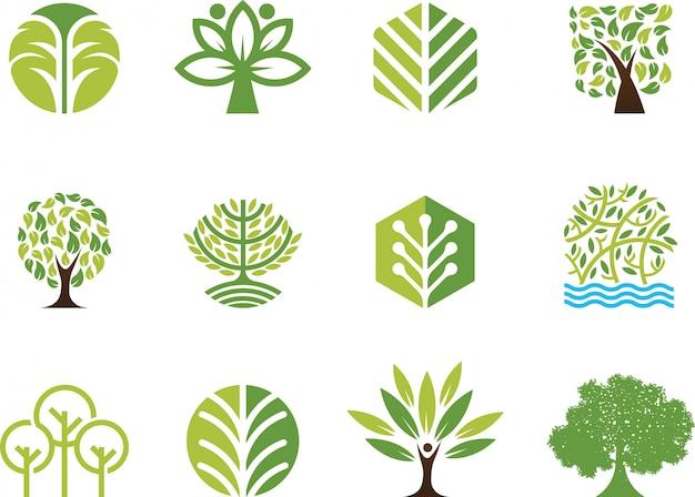 Árbol de ilustración vectorial Vector Premium