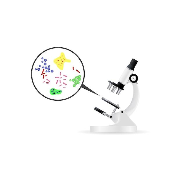 Bacterias bajo microscopio vector gratuito