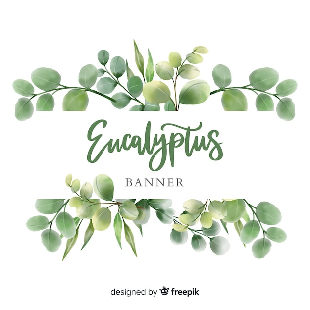 Banner en acuarela de hojas de eucalipto vector gratuito