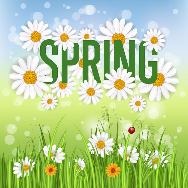 Banner de primavera con manzanilla en flor Vector Premium