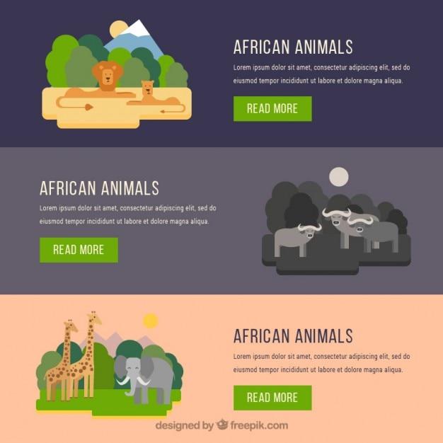 Banners de animales africanos en diseño plano vector gratuito