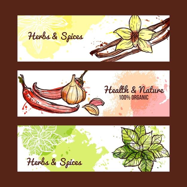 Banners de hierbas y especias vector gratuito