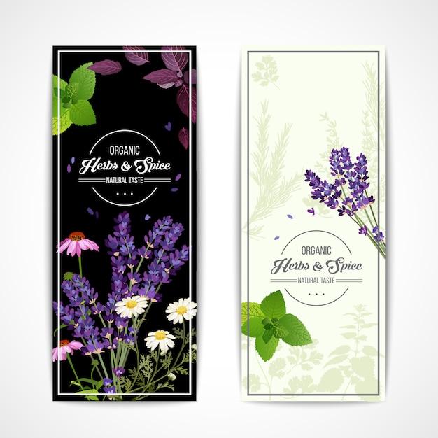 Banners de hierbas con flores silvestres y especias vector gratuito