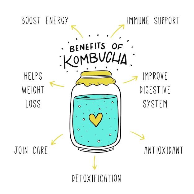 Beneficios del té de kombucha vector gratuito