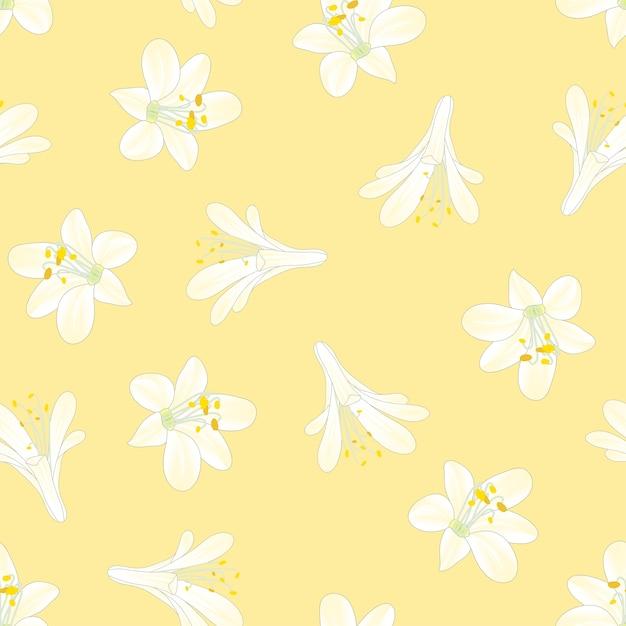 Blancanieves agapanthus sobre fondo amarillo Vector Premium